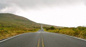 Effizienz-Nachhaltigkeit-Ecotransporte-Börse-Frachten